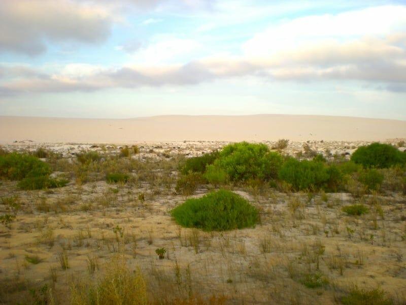 paysage road trip ouest australie