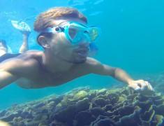 vizeo coral bay australie