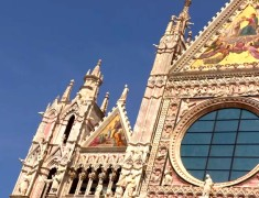 cathedrale rosace sienne