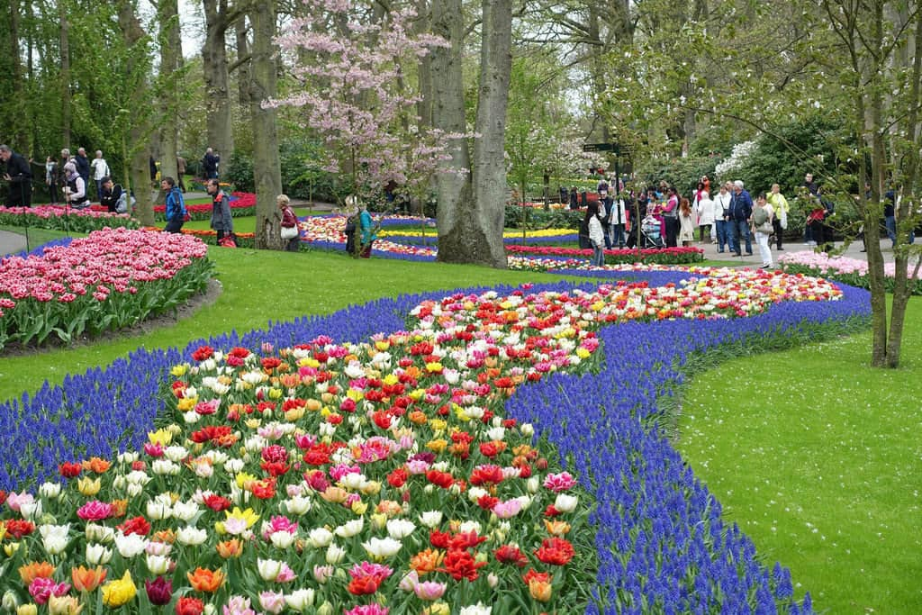jardin keukenhof amsterdam